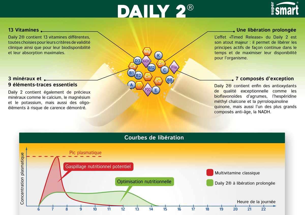 Illustration de l'effet prolongé de la multivitamine Daily 2